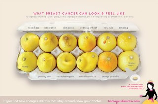 Life-Saving Poster Uses Lemons to Illustrate Different Signs of Breast Cancer