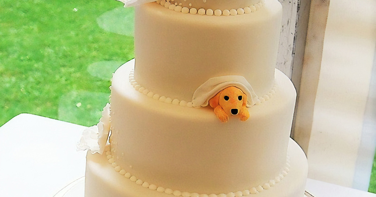 Couple Wanted To Include Their Doggo In Their Wedding So