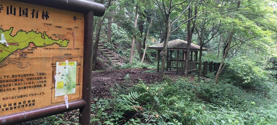 Forest Bathing instructor Training in Japan