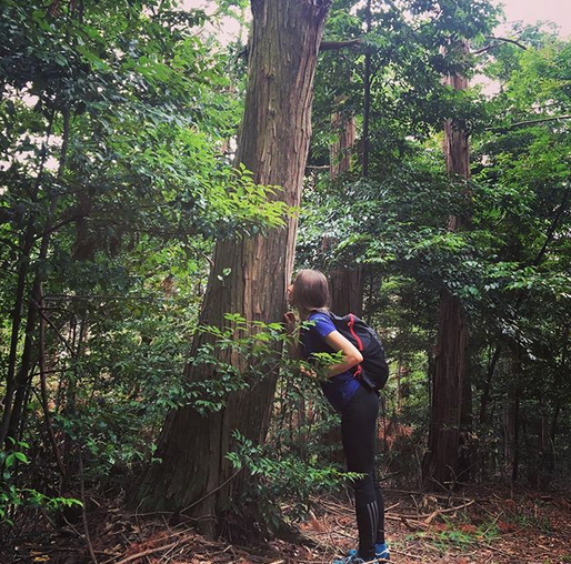 Shinrin Yoku Certification Training in Japan with The Mindful Tourist