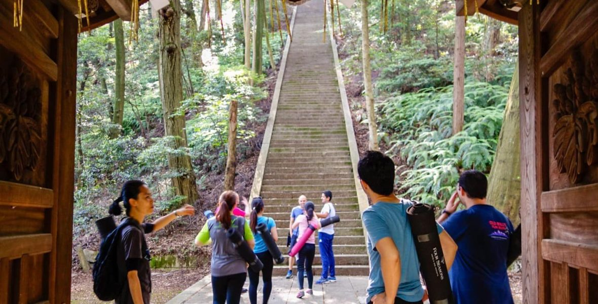 Forest Bathing Training in Japan with groups of people entering the forest