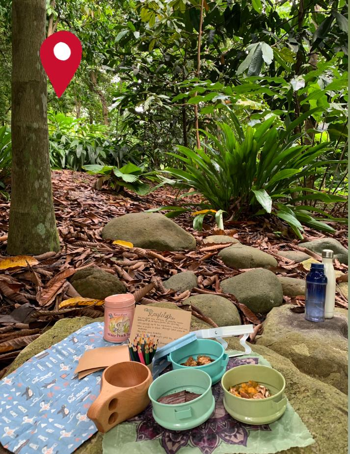 Forest bathing experience Singapore