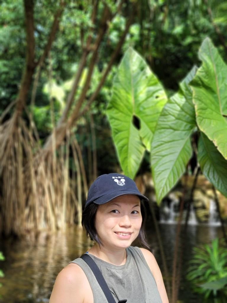 Forest Bathing Guide Singapore Jieying Yip