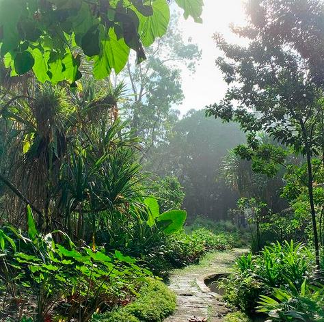 Singapore Nature City