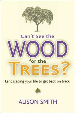 Portada del libro: ¿No puede ver la madera de los árboles?  Diseñando tu vida para volver a encarrilarte