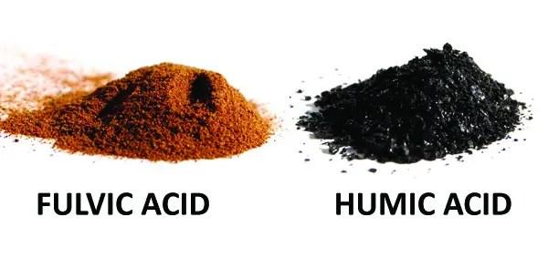 fulvic_acid_humic_acid