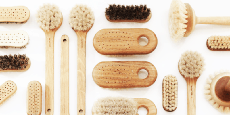 The Benefits of Body Brushing