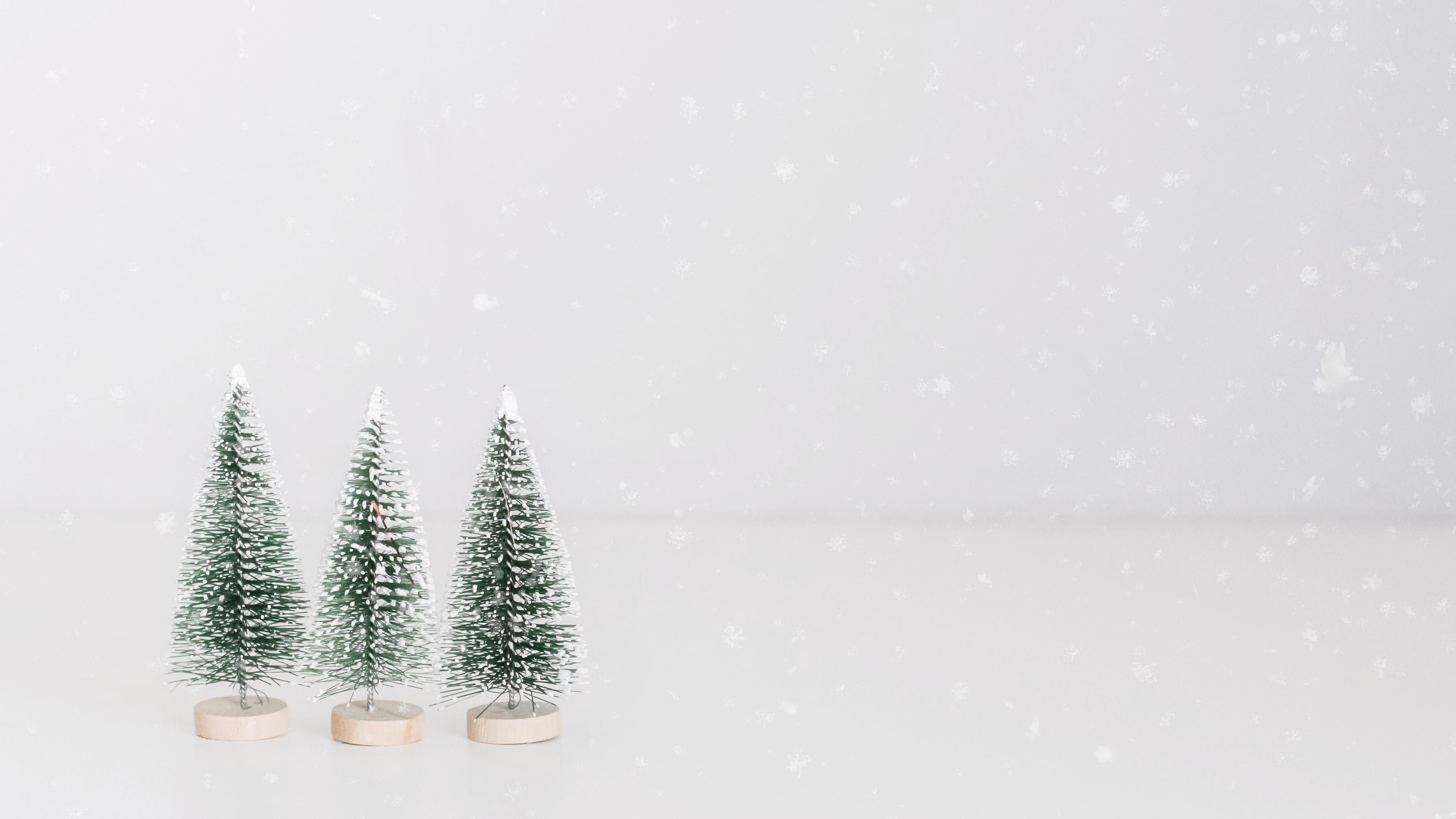Este Natal Proteja o Planeta The Minimal Magazine