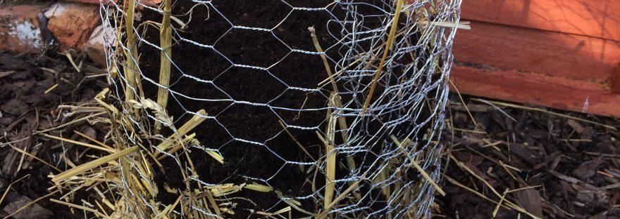 easy to grow all year round potato planter