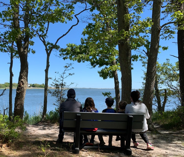 Family Hikes on Long Island - The Mint Chip Mama - Terrell River County Nature Preserve