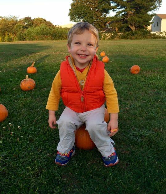 The Mint Chip Mama - Apple Picking a little boy on a pumpkin 2016