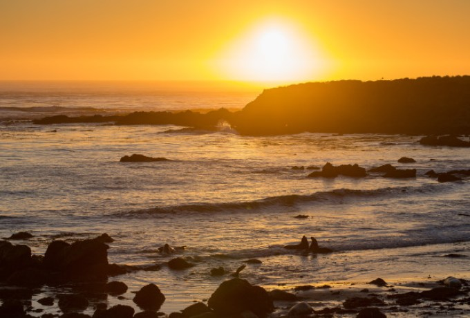 Sunset at Elephant Seal Rookery