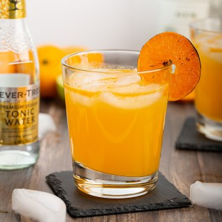 Burnt Mandarin Orange Gin and Tonic #mandarinorange #citrus #cocktail #gin #ginandtonic #burntorange #easyrecipe #alcohol #happyhour | The Missing Lokness