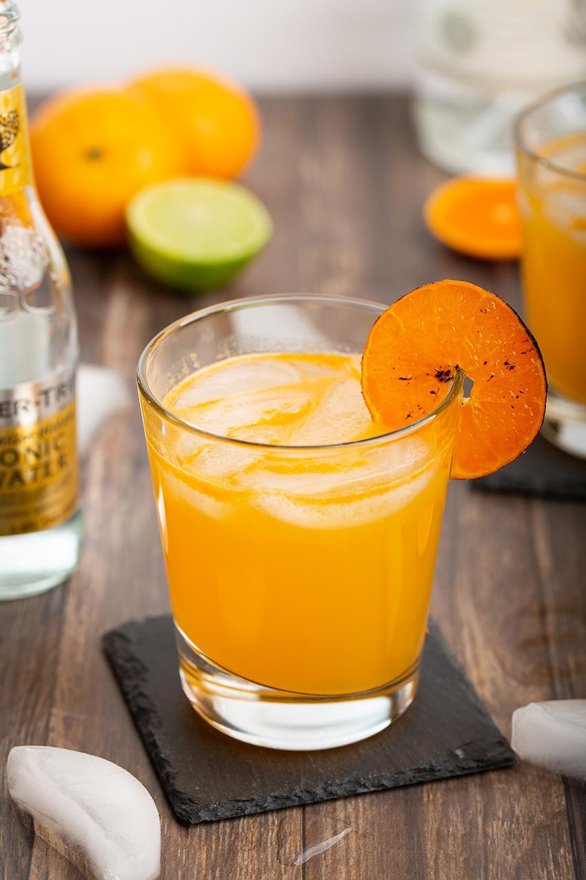 Burnt Mandarin Orange Gin and Tonic #mandarinorange #citrus #cocktail #gin #ginandtonic #burntorange #easyrecipe #alcohol #happyhour | The Missing Lokness