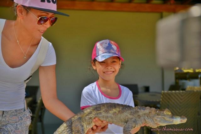 Baby Crocodile - Cebu Safari and Adventure Park