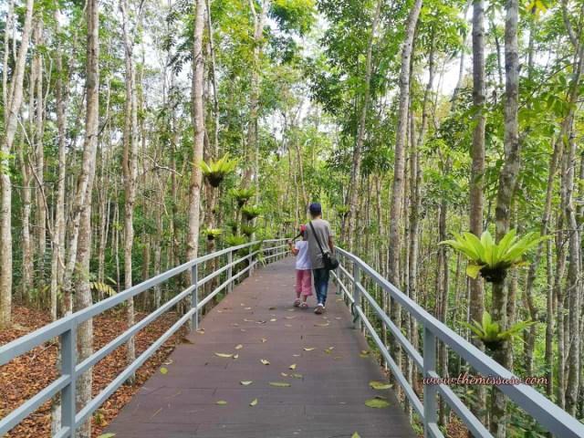 Cebu Safari and Adventure Park - Canopy Walk
