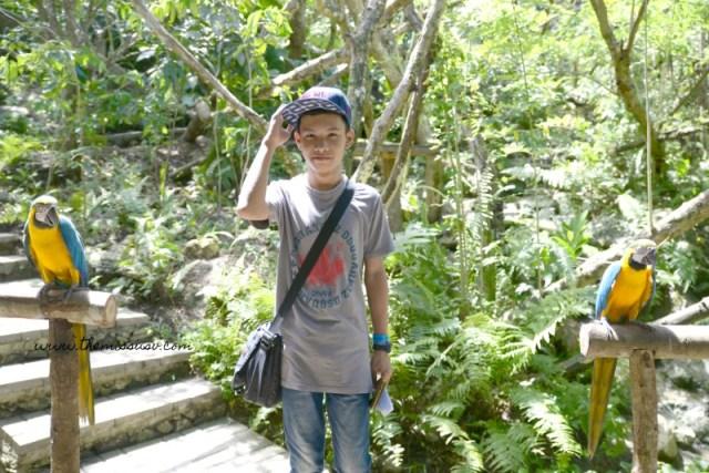 Cebu Safari and Adventure Park - Kuya with the birds