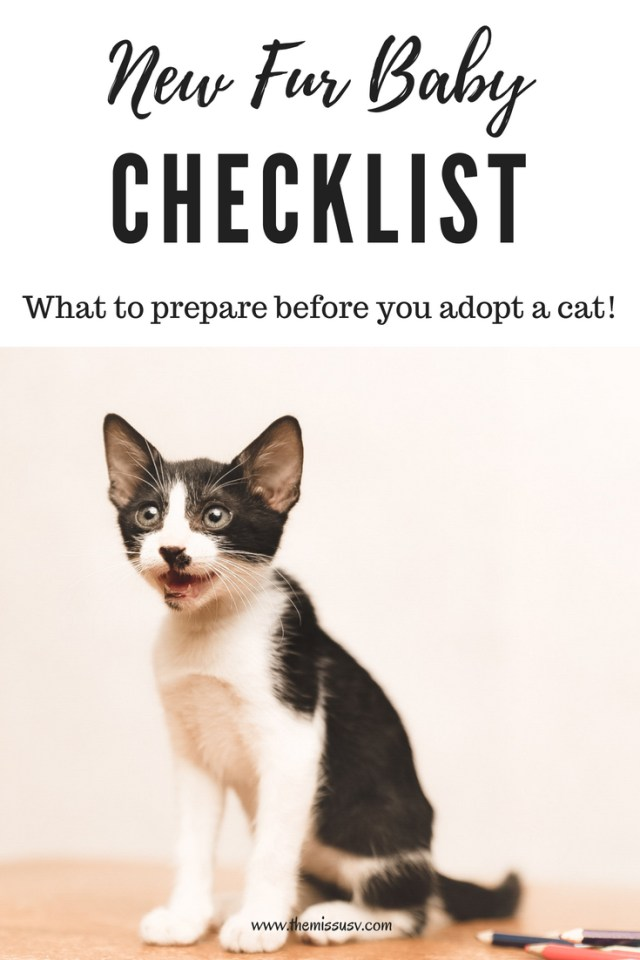 New Fur Baby Checklist (What to prepare before you adopt a cat!)