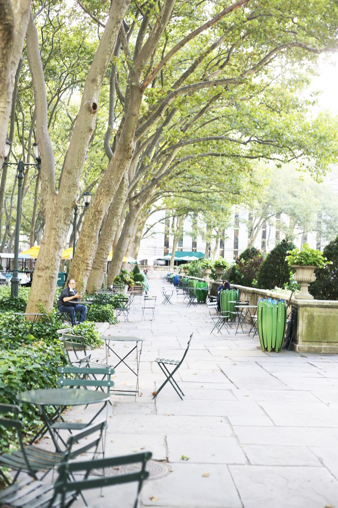 Bryant Park behind the New York Public Library