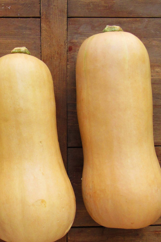 How to Cook Butternut Squash / Katie Workman / themom100.com / Photo by Laura Agra