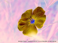 Monday Flower Art 5