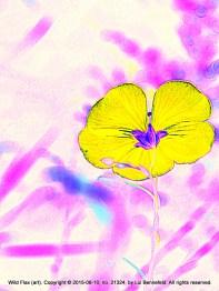 Variation on a Flower (1)