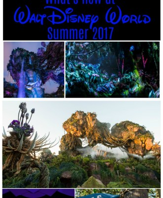 What's New at Walt Disney World in Summer 2017