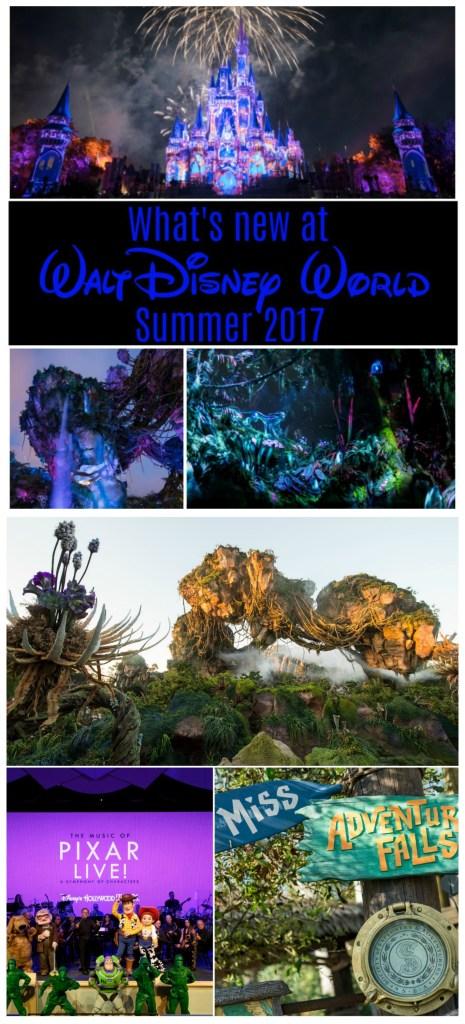 Walt Disney World Summer 2017