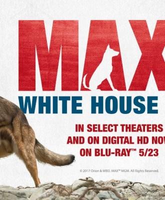 Max 2: White House Hero Blu-ray Giveaway + Exclusive Run Game!
