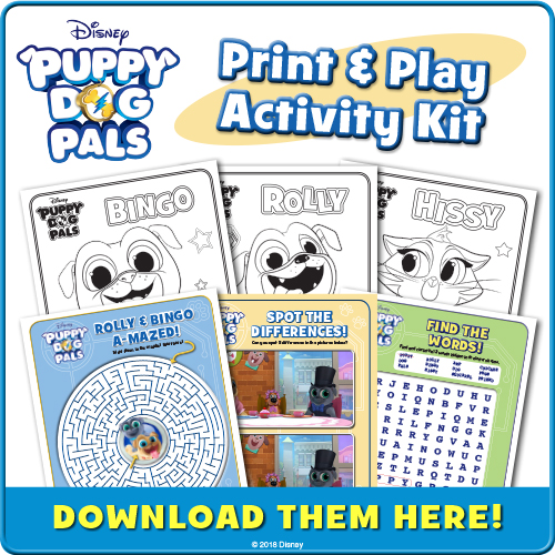Puppy Dog Pals Activity Kit