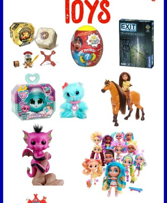 The Hottest Toys of the Holiday Season!