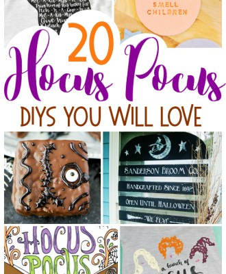 20 Hocus Pocus DIYS You Will Love