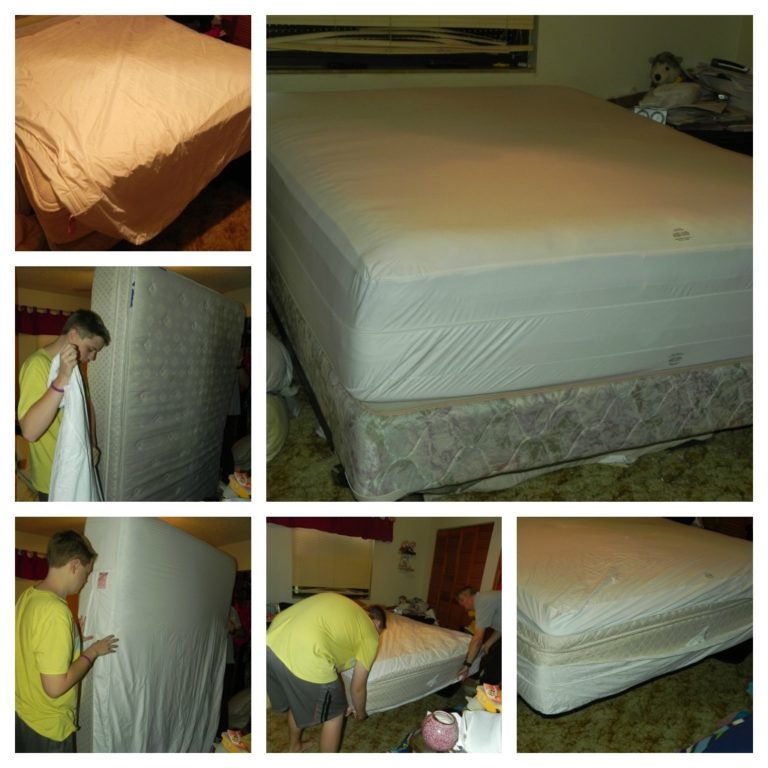 Mattress Cover Reviews Bed Bugs