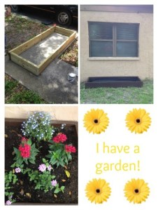 I Have a Garden! {Step 3}