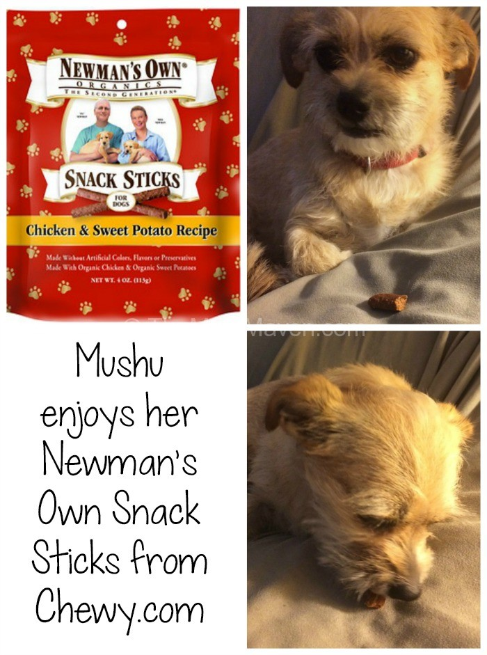 Newmans Own Soft Dog Food