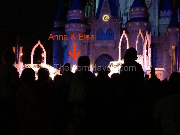 "Is it worth it to fight the crowds to see the very brief ""A Frozen Holiday Wish"" at the Magic Kingdom?"