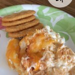 Whip up some Buffalo Chicken Dip for your next party.