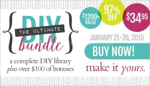 The Ultimate DIY Bundle is On Sale Now