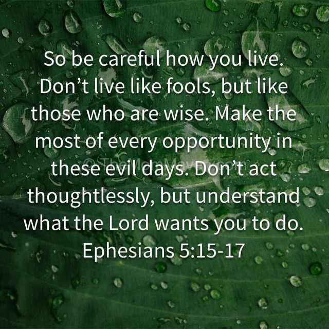Ephesians 5:15-17 verse for 2016