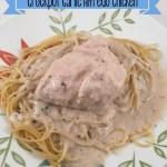 Crockpot Garlic Alfredo Chicken Recipe