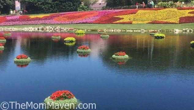 2017 Epcot International Flower and Garden Festival March 1-May 29. Contact me to book your vacation!