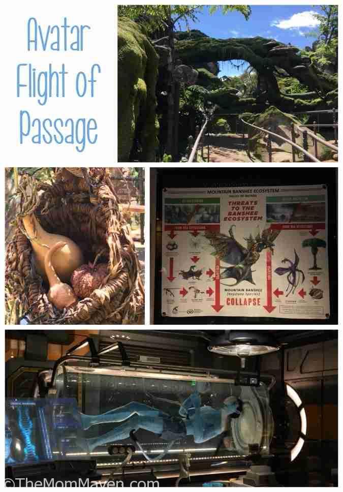 Pandora The World of Avatar is Now Open at Disney's Animal Kingdom.