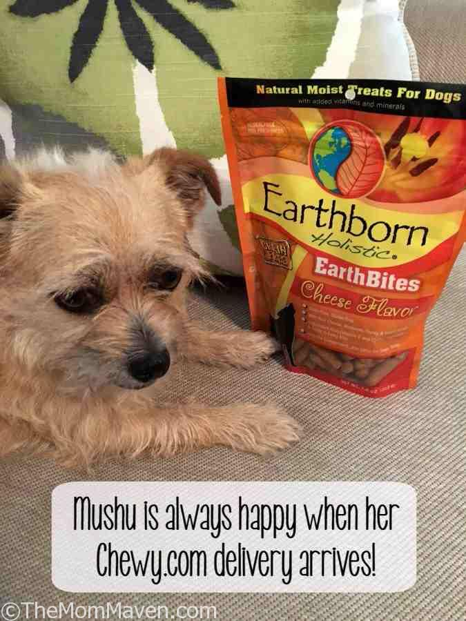 Earthborn Holistic EarthBites Cheese Flavor moist treats are sure to be a flavorful treat your dog will love.