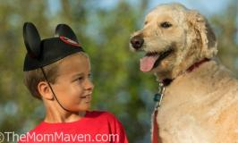 Walt Disney World Welcomes Dogs to Select Resorts