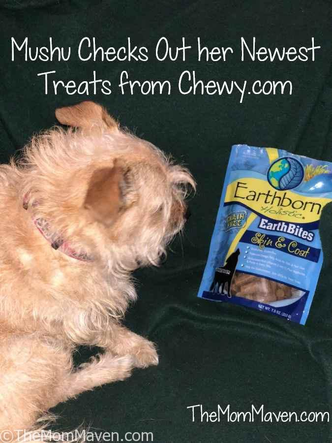 Healthy Coat For Dogs Review