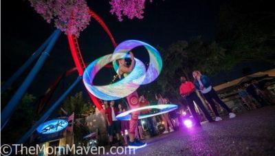 Summer Nights at Busch Gardens Tampa Kicks off May 25th