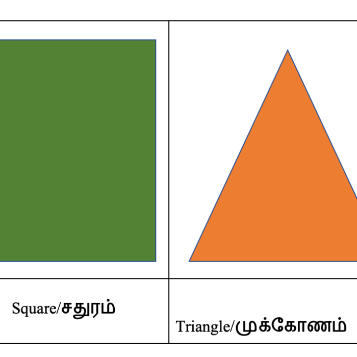Learning Shapes in Tamil