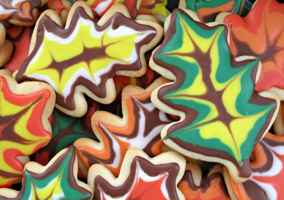 Decorated Thanksgiving Sugar Cookies lined with different fall colors