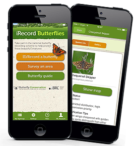 Nature-Apps-Satiate-the-nature-diverse-collection-of-Nature-Apps home-backup