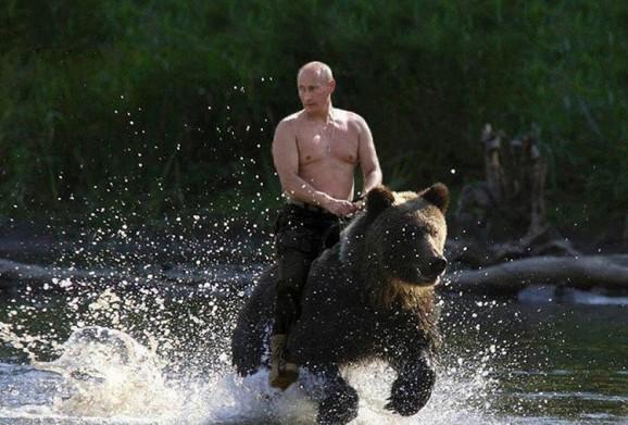 vladimir-putin-bear
